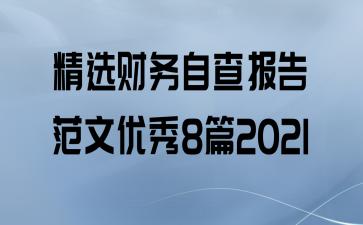 精选财务自查报告范文优秀8篇2021