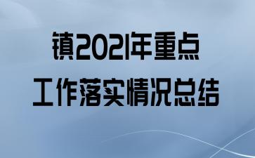 镇2021年重点工作落实情况总结