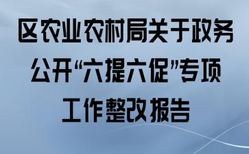 """区农业农村局关于政务公开""""六提六促""""专项工作整改报告"""